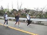 甲山を走る1