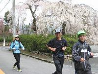 甲山を走る2