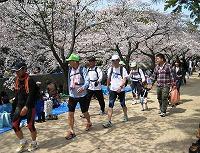 夙川公園を行く1