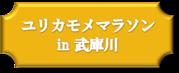 ユリカモメマラソンin武庫川